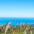 どこまでも続きそうな大地を標高1000mから展望!!「大平山荘展望台」