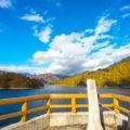 秘境感あふれる道をたどると・・・群馬県「矢木沢ダム&奥利根湖」