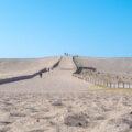 パノラマ景色と砂地に描かれる風紋があなたを迎える!日本三大砂丘「中田島砂丘」